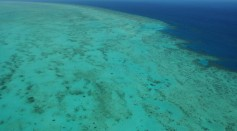 Aerial views of The Great Barrier Reef are seen from above on August 7, 2009 in Cairns, Australia.