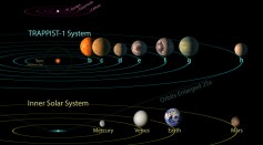 In this NASA digital illustration handout released on February 22, 2017, seven planets are shown.