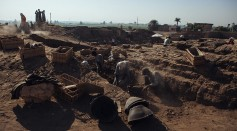 Egyptian Funerary Gardens Latest Discovery