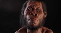 Depiction of ancient human being Homo Naledi, that roamed the Earth 335,000 and 236,000 years ago.