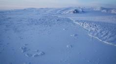 Northern polar area