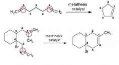 Organometallic Chemistry and Olefin Metathesis
