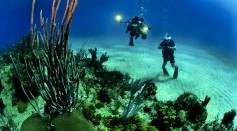 Scuba divers at a coral reef