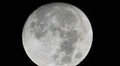 Project Artemis is set to explore the moon in 2024 and NASA is looking for help building the lunar lander.