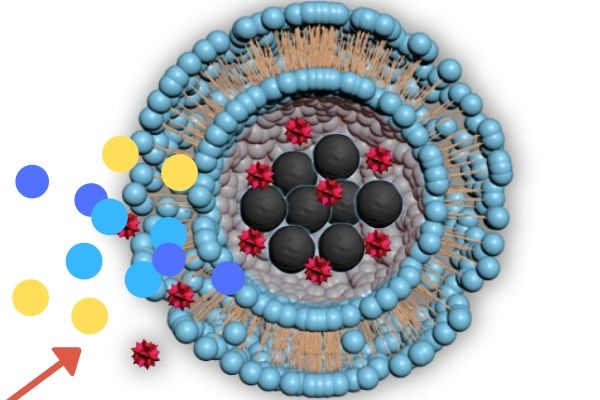 Revelations in the Quantum Realm as Positrons and Spherical Nanoparticles Collided With Expected Results