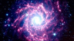 Supernovae: Cradles of Creation and Harbingers of Destruction in the Known Universe