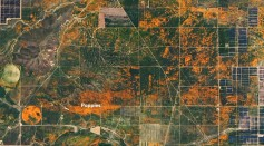 NASA Shared Image of Unexpected Superbloom of Orange Poppies In Southern California As Seen From Space
