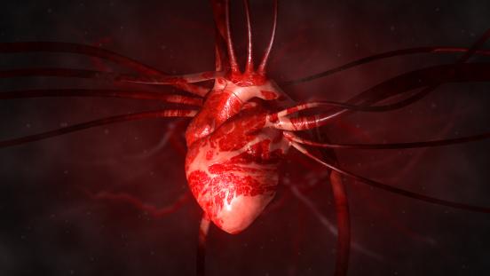 COVID-19 mầm bệnh tấn công tế bào tim trong phòng thí nghiệm