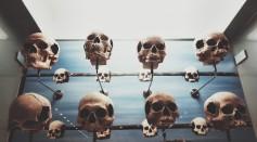 skulls for sale on facebook