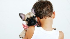 pet dogs and kids