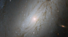 distant galaxy captured by NASA's Hubble Space Telescope
