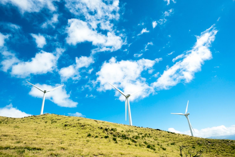 Ngừng than, năng lượng sạch là rất quan trọng để phục hồi sau COVID: Chánh văn phòng LHQ