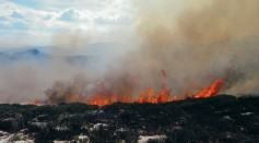 'Impossible' Arctic Wildfires Emerged Due to Global Warming