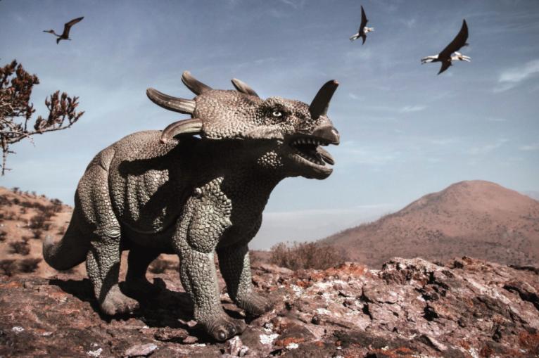 Một đàn khủng long có sừng đã bị mắc bệnh ung thư xương