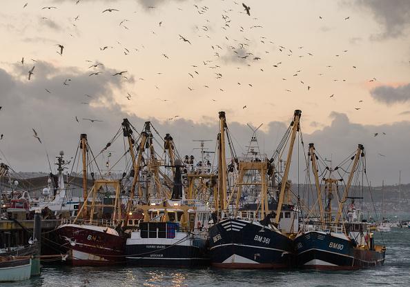 Đối xử với cá như một tài sản y tế công cộng, không phải là hàng hóa, là chìa khóa cho an ninh lương thực