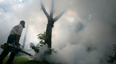 Outbreak Hits Jakarta