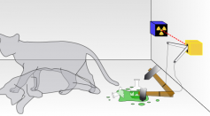 Diagram of Schrödinger's cat thought experiment. Roughly based on