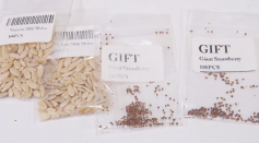 Mysterious Seed Packets May Be Part of an International 'Brushing' Scam