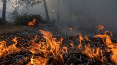 Arctic 'Zombie' Wildfires Release Megatons of Carbon Dioxide
