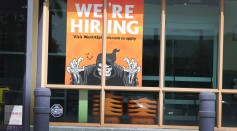 Unemployment Rate Drops To 8.4 Percent, As Economy Adds More Jobs Than Expected