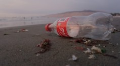 Coca-Cola Uses 100% Recycled Plastic for their Bottles in Netherlands and Norway
