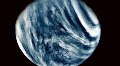 Phosphine Gas in Venus May be Signs of Life