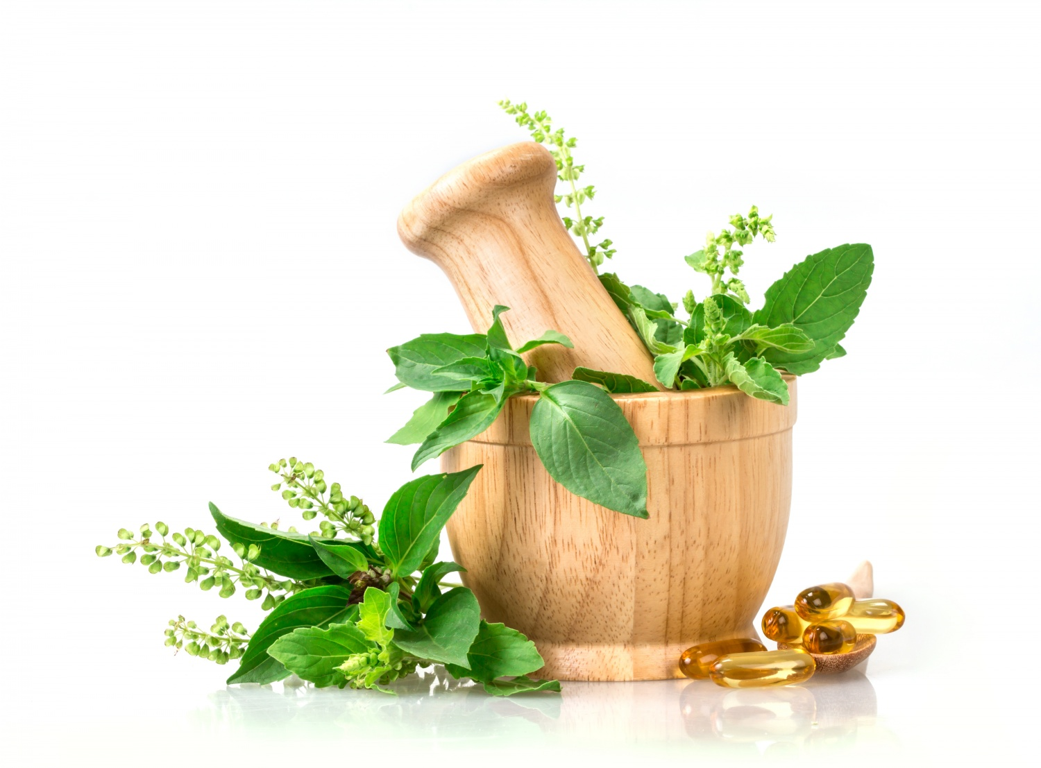 10 Popular Herbs Used As Health Supplements | Science Times