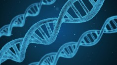A DNA String