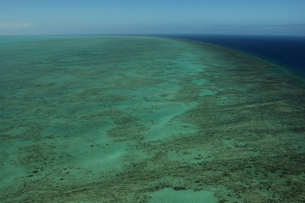 Great Barrier Reef Threatened With Extinction