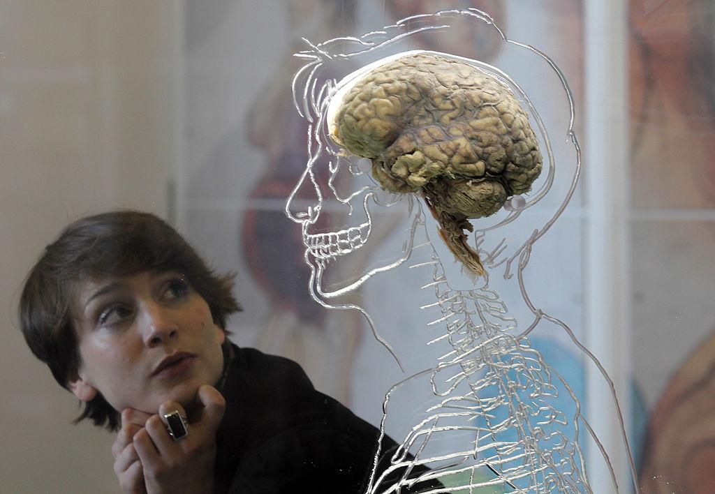 Kết thúc có hậu có thể làm rối loạn khả năng ra quyết định của bộ não của bạn, nghiên cứu nói