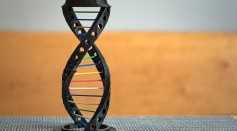 Everything You Need To Know About Gene Editing