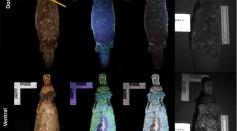 Do Mammals Have Biofluorescent Fur?