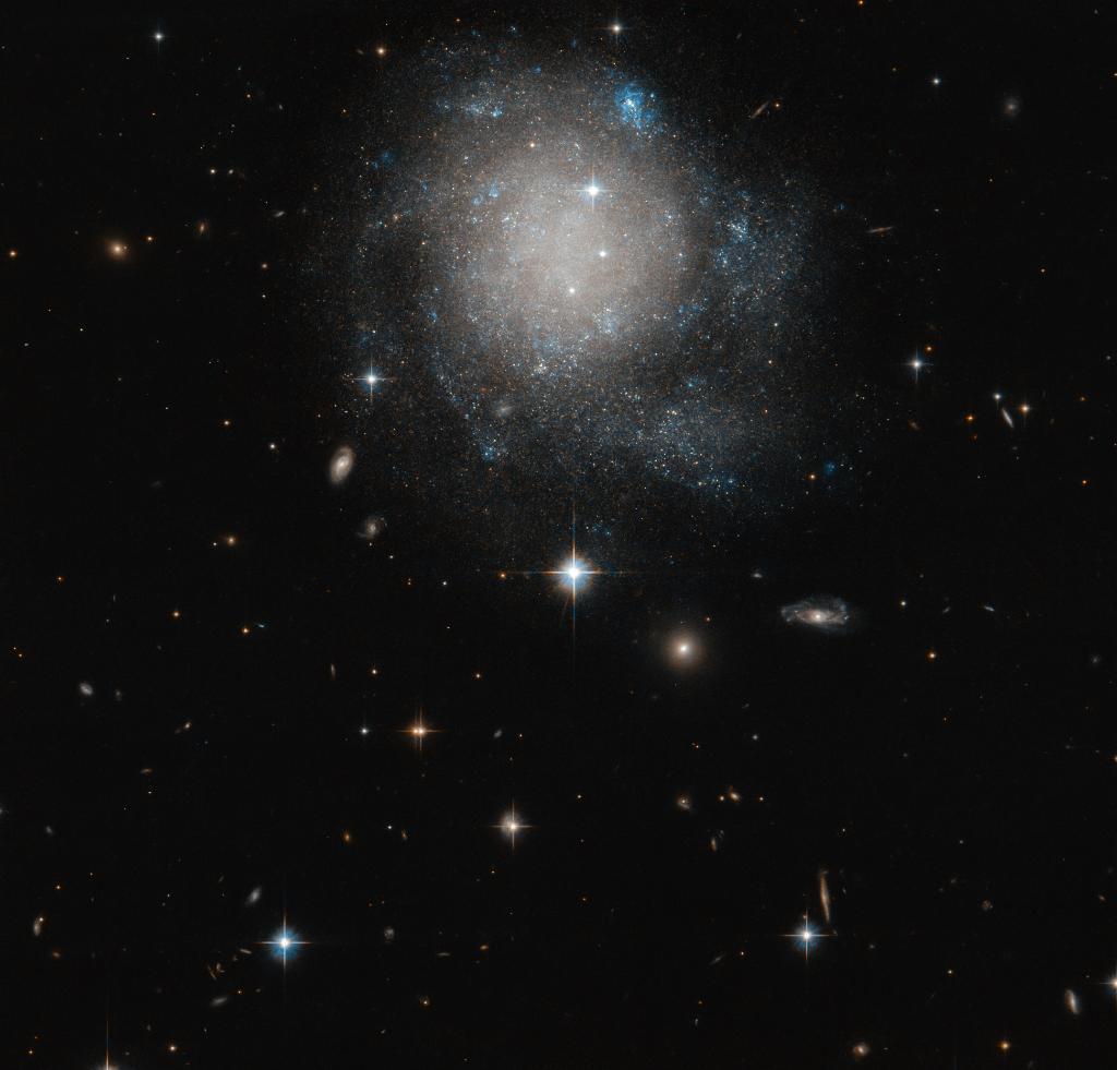 NASA's Hubble Space Telescope Shares