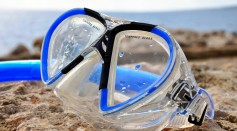 Science Times - Snorkeling Gear, Nasal Cavities of Animals Are More Effective PPEs