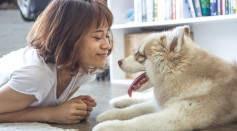 Science Times - Man's Best Friend No More: Does a Dog Now Belong to a Woman?