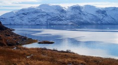 Walrus Ivory Holds The Clue to the Lost Norse Civilization in Greenland