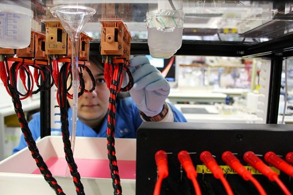 Science Times - Pee Bacteria, a Game Changer in the Production of Electricity