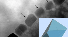 TEM image of part of a magnetosome chain with elongated octahedral habits (marked by black arrows and modeled in the lower left).