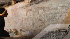 Australia's Oldest Rock Painting Is Of Its Most Iconic Animal, the Kangaroo