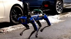 Robotic Dog Caught In Action As It Clears A Crime Scene in the Bronx