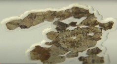 Dead Sea Scrolls Found Recently Are Fragments of Biblical Texts That Have Not Been Seen In Decades