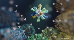 Nanoparticle Flu Vaccine Could Protect Animals From Seasonal and Pandemic Flu Strains