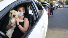 Drive Through Pet Vaccine Clinic Held Amid COVID-19 Pandemic
