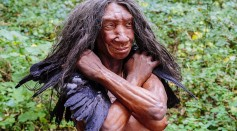Neanderthals Went Because They Lack This Important Skill That Homo Sapiens Have