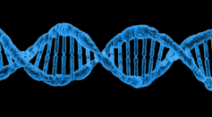 Science Times - National DNA Day 2021: Important Facts You Need to Know, How You Can Take Part in the Occasion