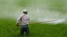 Pesticides Exposure Increases Susceptibility to COVID-19, Study Finds