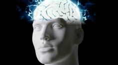 Science Times - Human Brain Activity Now Recordable Through Wireless Approach, New Study Reveals