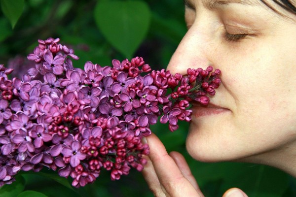 Poor Sense Of Smell Linked to 50% Chances of Having Pneumonia [STUDY]