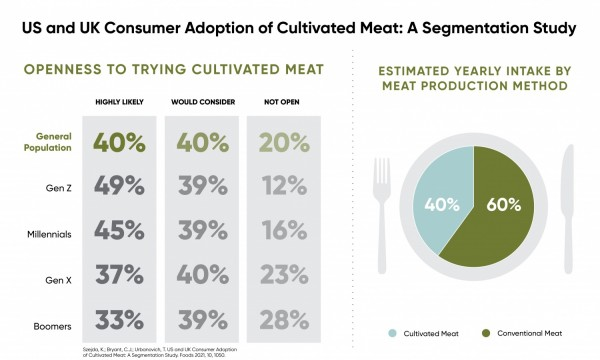A Summary of the US and the UK Consumer Adoption of Cultivated Meat