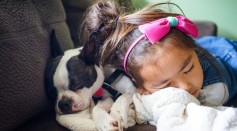 Children Sleeping With Their Dogs Maintain Good Sleep Quality As Those Who Sleep Alone, Debunking Long-Held Belief